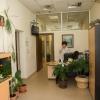 Клиника Младост 124